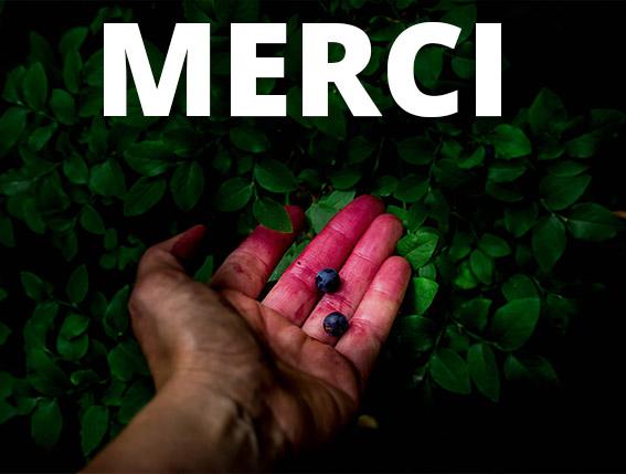 Visuel_Article_Blog_merci