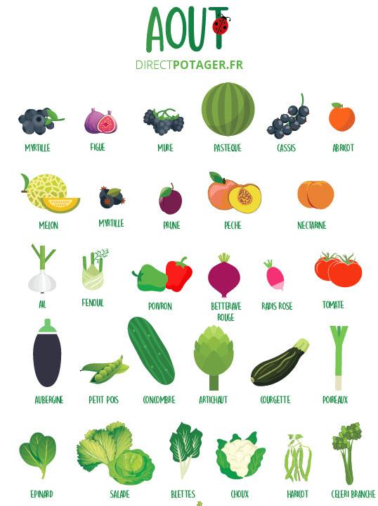 direct potager fruits et légumes aout