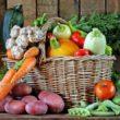 vendre paniers légumes et fruits potager