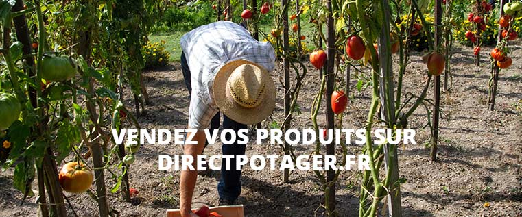trouver producteur local